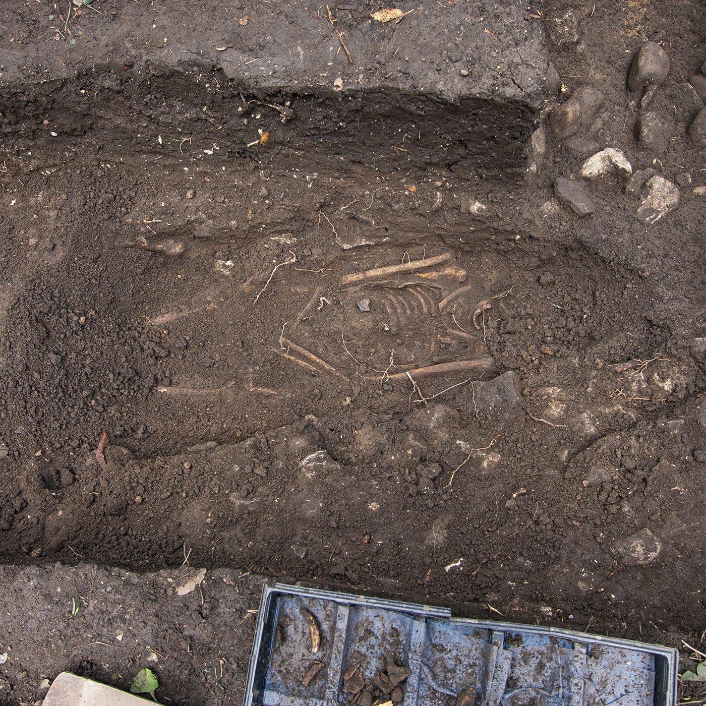 Tadcaster Castle Burials Dig